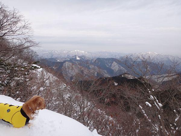 ララと山登り 貝月山へ