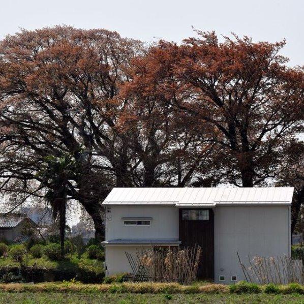 アイキャッチ 桜が見守る家 垂井町