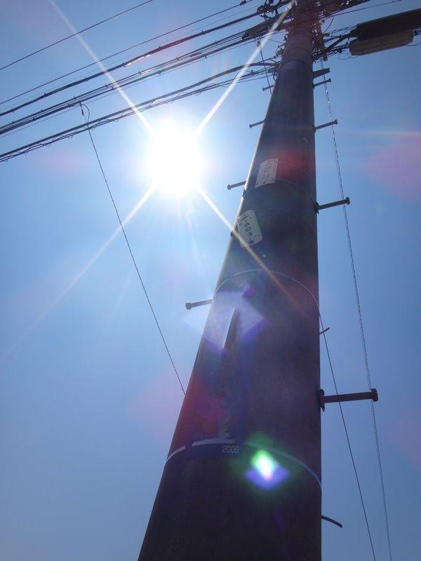電柱の脇から強い陽射し