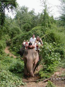 タイ カンチャナブリートレッキングツアー 象にのってお散歩