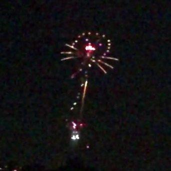 今年も見てきました 長良川中日花火大会