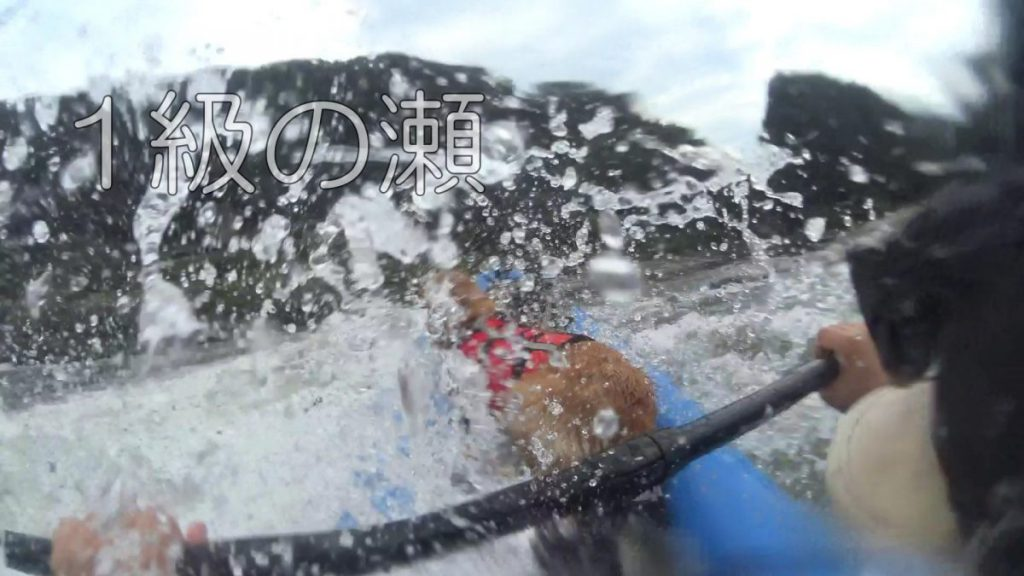 長良川 川下り ララと一緒 ラフティング 犬