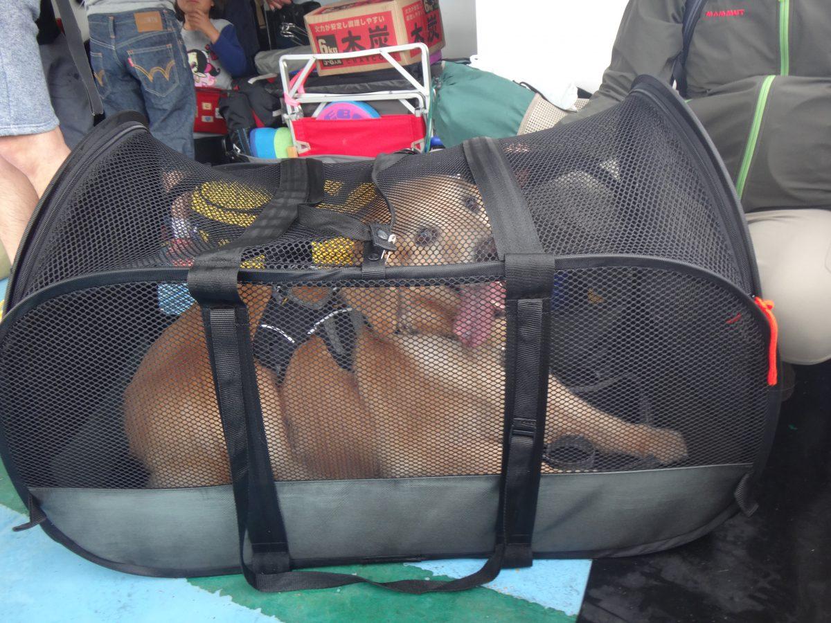 犬島 その4 大型犬と一緒に島へ渡った記録