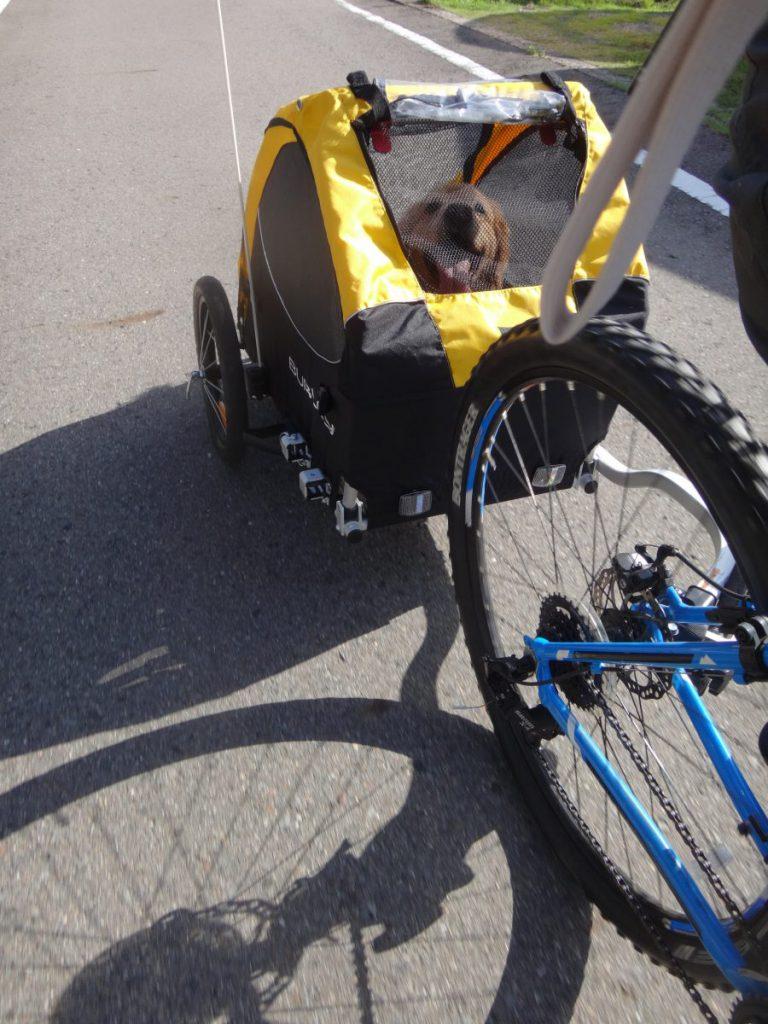 マウンテンバイク トレーラー バーレー mtb  Burley Tail Wagon