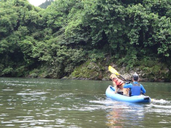 NRS アウトロー 岐阜の長良川で川下り デビュー ゴールデンレトリバーのララを乗せて