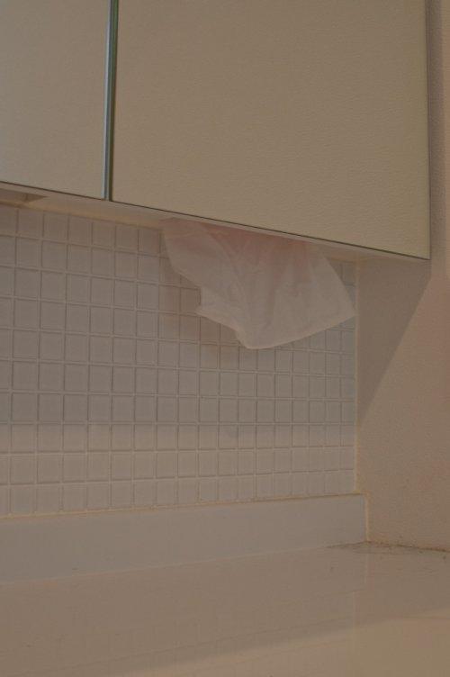 13 岐阜のFrameWork設計事務所の物件 七郷の平屋 洗面 ティッシュ収納