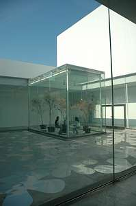 建築訪問 金沢21世紀美術館 気持ちよさそうな明るい中庭