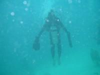 パラオ ダイビング インストラクターがマンタの真似
