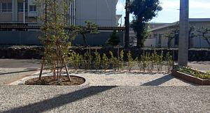 岐阜のFrameWork設計事務所の物件「三橋の家」のお施主さんが植栽を自分で植えてブロックを敷き詰めて外構をご自身でやられました