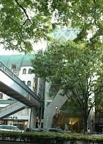 表参道に建つ 建築家 伊東豊雄さんの2004年の作品 TOD'S 表参道 外観